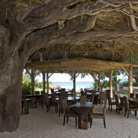 Bar & snack sous arbre du petit hotel de beau Vallon