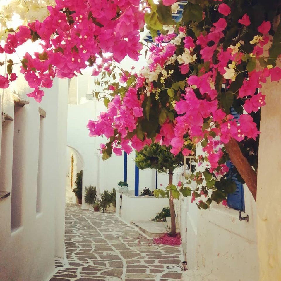 Ruelle de Parikia île de Paros îles Cyclades Grèce